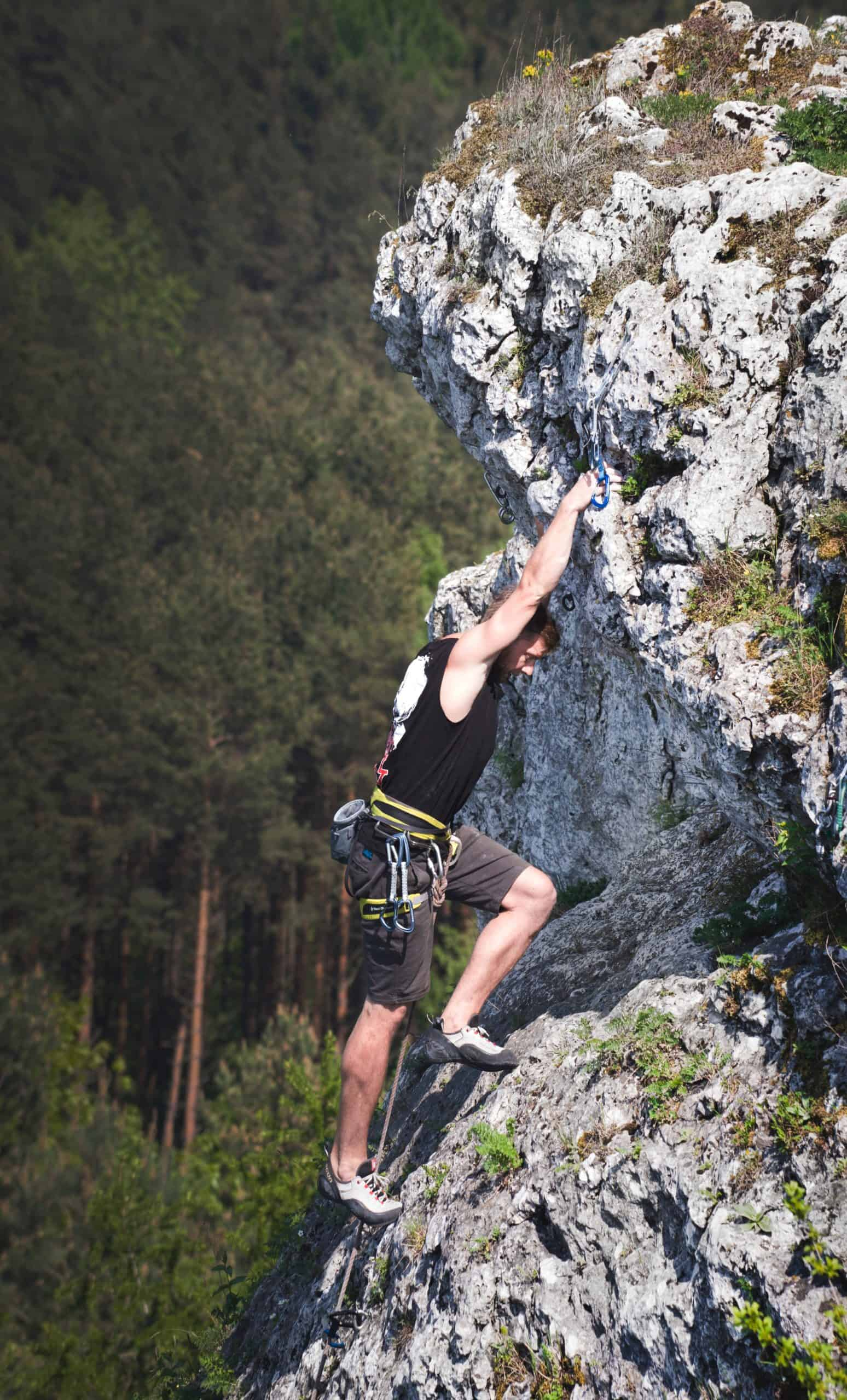 Some Must-Have Tree Climbing Gears For Beginners